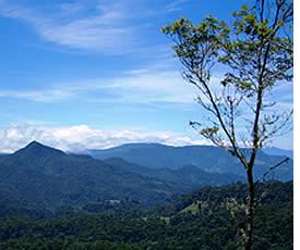 De bergen van Boquete
